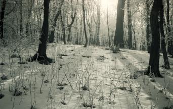 Roman Korec - At The Edge of Eden koniec sveta _ 026