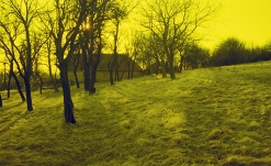 Roman Korec - At The Edge of Eden koniec sveta _ 028