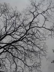 Roman-Korec-photo-Lost-In-#vanRE-Land-148-20120428