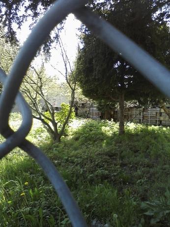 Roman-Korec-photo-Lost-In-#vanRE-Land-219-20140511 (7)
